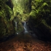 Where elves might appear, a lush green canyon from Lomond, Scotland