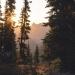 Sunrise in the Alpine, North Cascades National Park, Washington