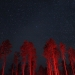 Starry sky in Glacier National Park with trees lit by brake lights
