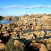 The Granite Dells Prescott Az